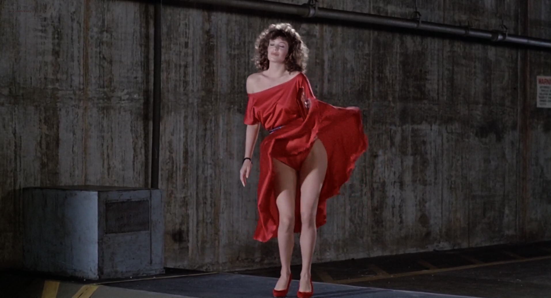 Kelly LeBrock nude brief topless and bush with slow motion – The Woman in Red (1984) hd720-1080p